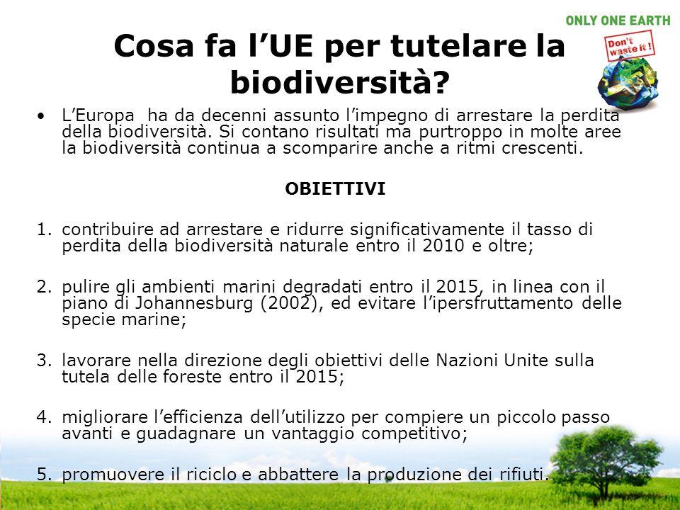 Cosa fa l'UE per tutelare la biodiversità? L'Europa ha da decenni assunto l'impegno di arrestare la perdita della biodiversità. Si contano risultati m