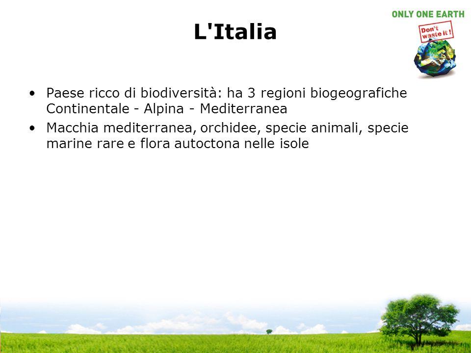 L'Italia Paese ricco di biodiversità: ha 3 regioni biogeografiche Continentale - Alpina - Mediterranea Macchia mediterranea, orchidee, specie animali,