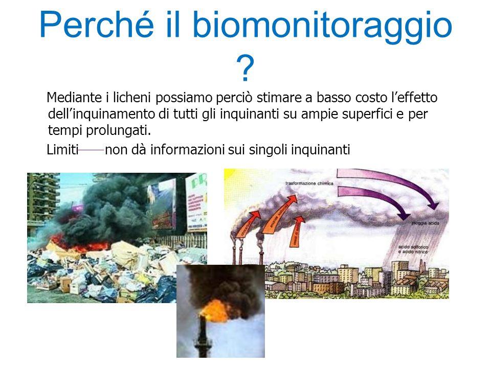 Perché il biomonitoraggio ? Mediante i licheni possiamo perciò stimare a basso costo l'effetto dell'inquinamento di tutti gli inquinanti su ampie supe