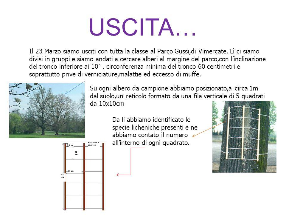 USCITA… Il 23 Marzo siamo usciti con tutta la classe al Parco Gussi,di Vimercate. Lì ci siamo divisi in gruppi e siamo andati a cercare alberi al marg
