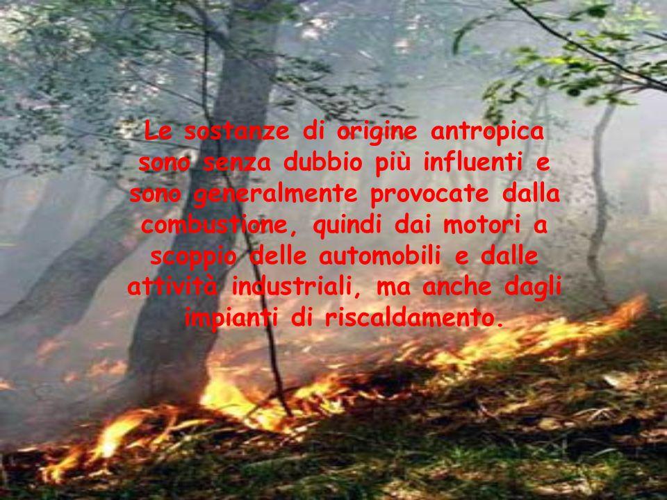 Le sostanze di origine antropica sono senza dubbio pi ù influenti e sono generalmente provocate dalla combustione, quindi dai motori a scoppio delle a
