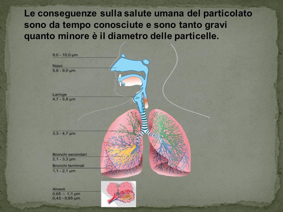 Le conseguenze sulla salute umana del particolato sono da tempo conosciute e sono tanto gravi quanto minore è il diametro delle particelle.
