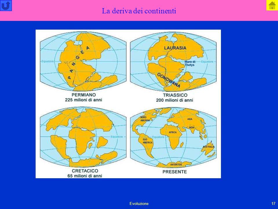Evoluzione17 La deriva dei continenti