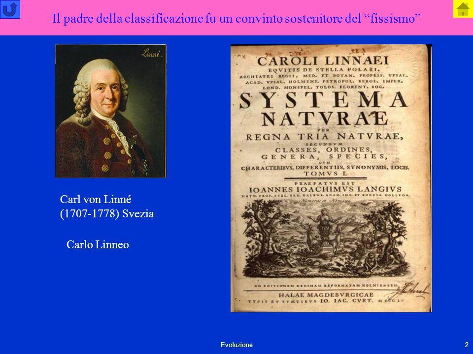 """Evoluzione2 Il padre della classificazione fu un convinto sostenitore del """"fissismo"""" Carlo Linneo Carl von Linné (1707-1778) Svezia"""
