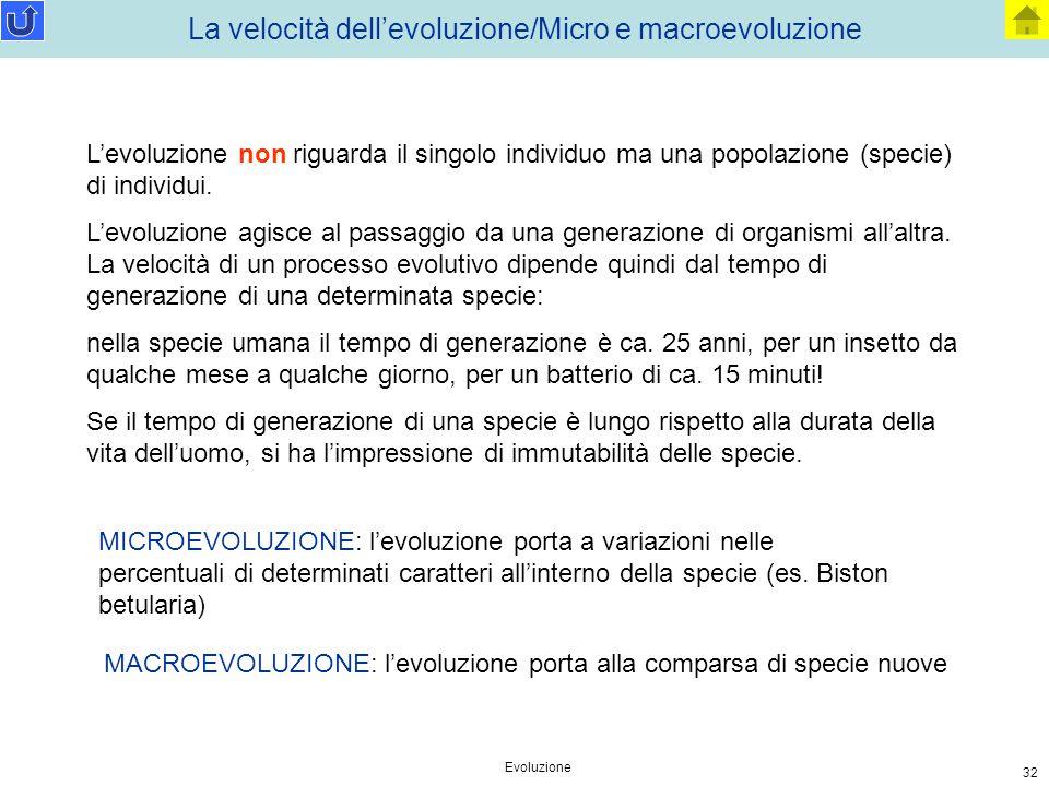 Evoluzione 32 La velocità dell'evoluzione/Micro e macroevoluzione L'evoluzione non riguarda il singolo individuo ma una popolazione (specie) di indivi