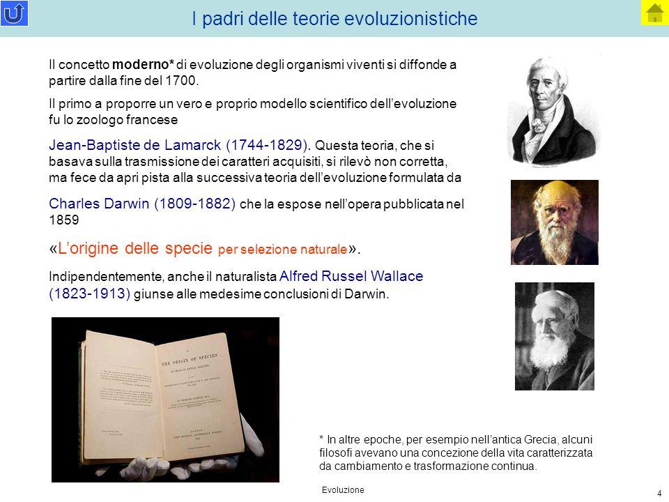 Evoluzione 4 I padri delle teorie evoluzionistiche Il concetto moderno* di evoluzione degli organismi viventi si diffonde a partire dalla fine del 170