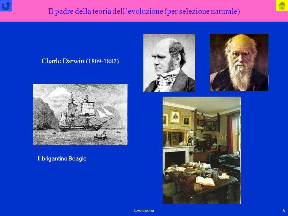 Evoluzione6 Il padre della teoria dell'evoluzione (per selezione naturale) Charle Darwin (1809-1882) Il brigantino Beagle