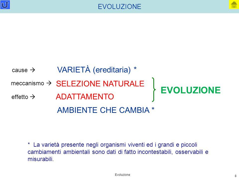 Evoluzione 8 EVOLUZIONE AMBIENTE CHE CAMBIA * EVOLUZIONE * La varietà presente negli organismi viventi ed i grandi e piccoli cambiamenti ambientali so