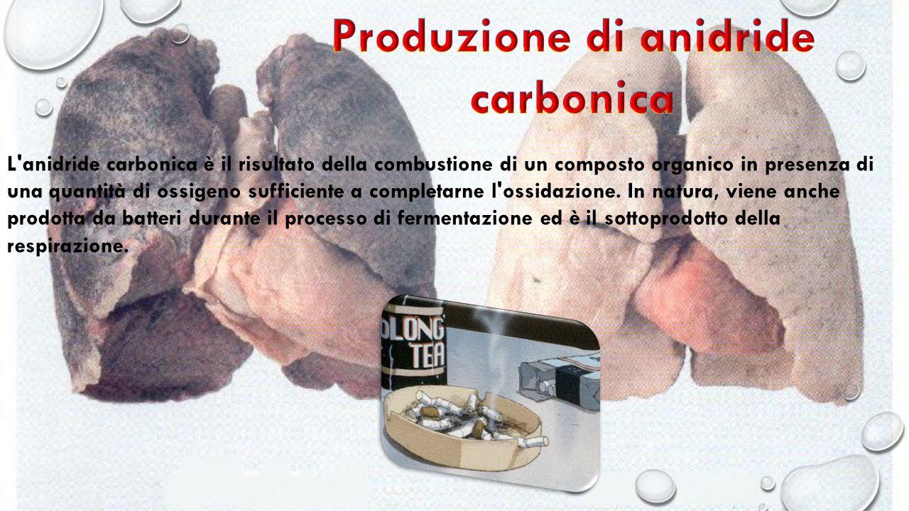 L anidride carbonica è il risultato della combustione di un composto organico in presenza di una quantità di ossigeno sufficiente a completarne l ossidazione.