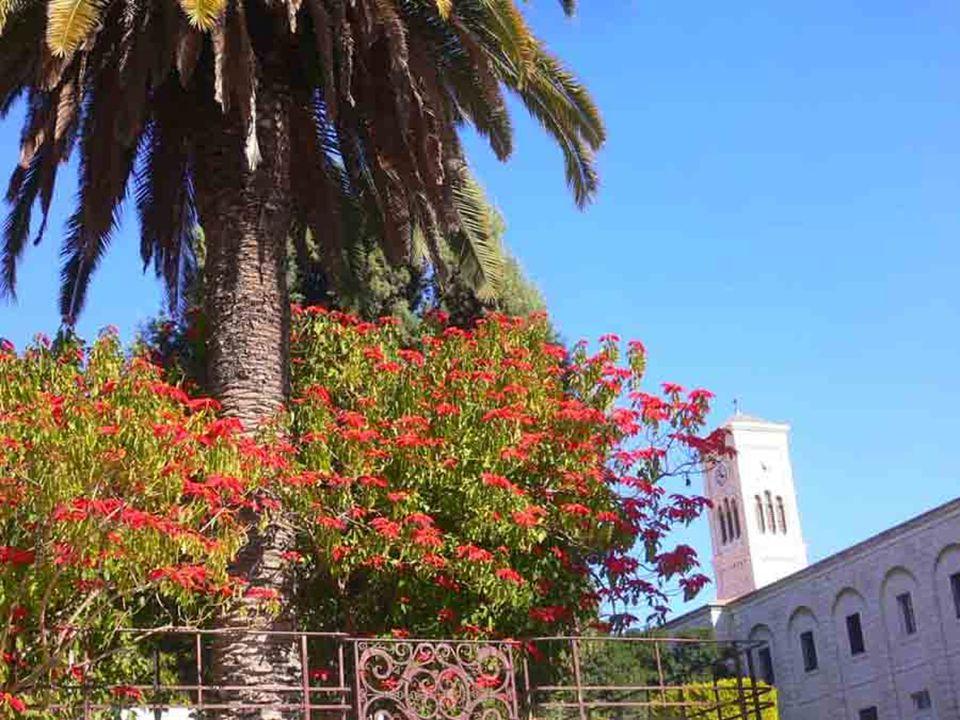 E, pertanto, vorrei rivolgere a voi l'invito a riscoprire la bellezza di pregare assieme come famiglia alla scuola della Santa Famiglia di Nazaret.