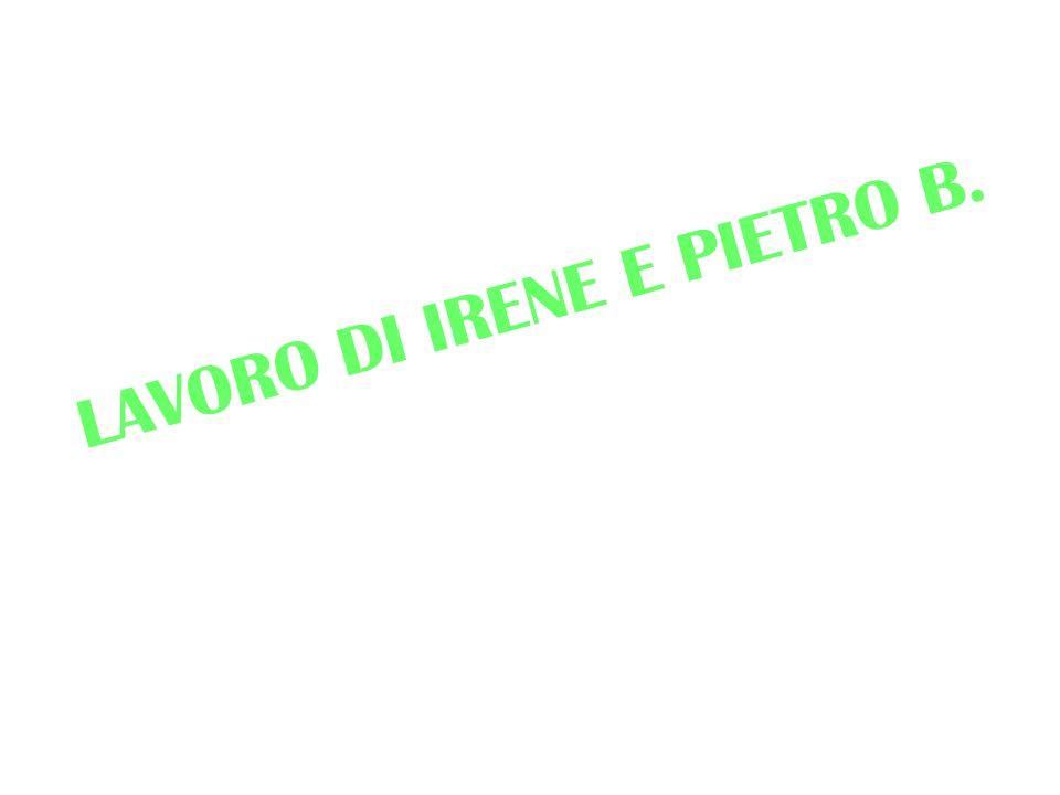 LAVORO DI IRENE E PIETRO B.