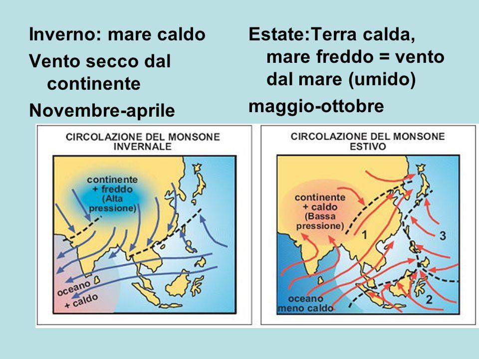 Inverno: mare caldo Vento secco dal continente Novembre-aprile Estate:Terra calda, mare freddo = vento dal mare (umido) maggio-ottobre