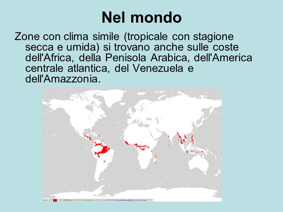 Nel mondo Zone con clima simile (tropicale con stagione secca e umida) si trovano anche sulle coste dell Africa, della Penisola Arabica, dell America centrale atlantica, del Venezuela e dell Amazzonia.