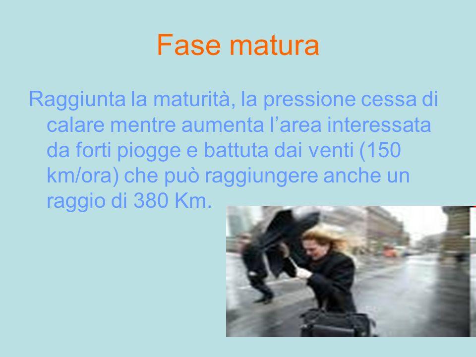 Fase matura Raggiunta la maturità, la pressione cessa di calare mentre aumenta l'area interessata da forti piogge e battuta dai venti (150 km/ora) che può raggiungere anche un raggio di 380 Km.