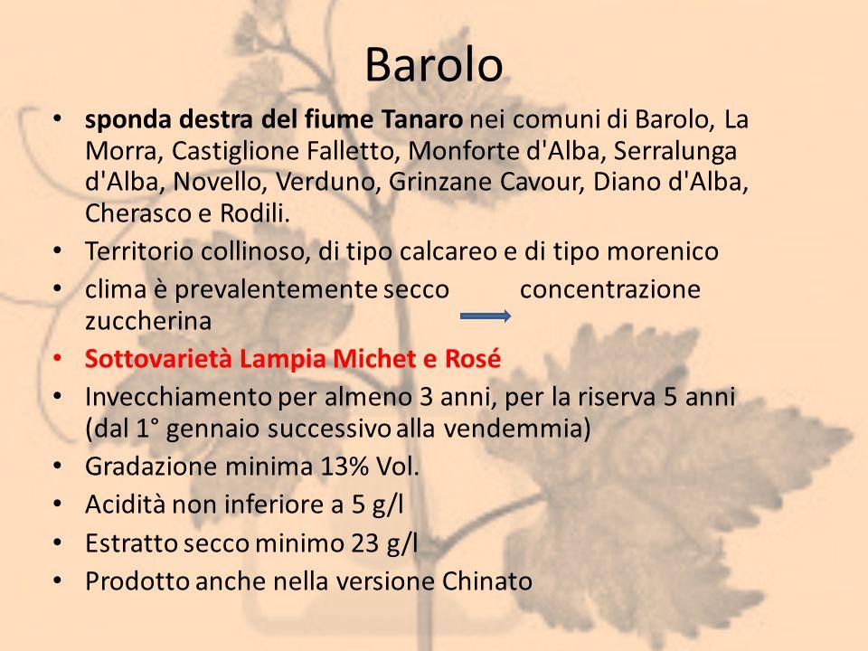 Barolo sponda destra del fiume Tanaro nei comuni di Barolo, La Morra, Castiglione Falletto, Monforte d'Alba, Serralunga d'Alba, Novello, Verduno, Grin