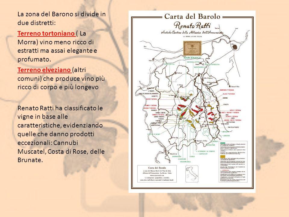 La zona del Barono si divide in due distretti: Terreno tortoniano ( La Morra) vino meno ricco di estratti ma assai elegante e profumato. Terreno elvez