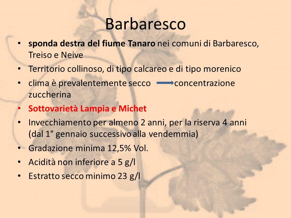 Barbaresco sponda destra del fiume Tanaro nei comuni di Barbaresco, Treiso e Neive Territorio collinoso, di tipo calcareo e di tipo morenico clima è p