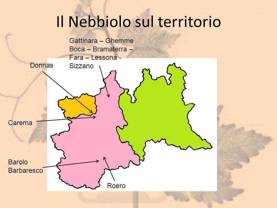 Il Nebbiolo sul territorio Donnas Barolo Barbaresco Roero Carema Gattinara – Ghemme Boca – Bramaterra – Fara – Lessona - Sizzano