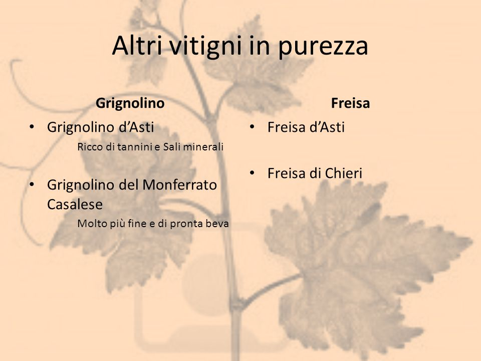 Altri vitigni in purezza Grignolino Grignolino d'Asti Ricco di tannini e Sali minerali Grignolino del Monferrato Casalese Molto più fine e di pronta b