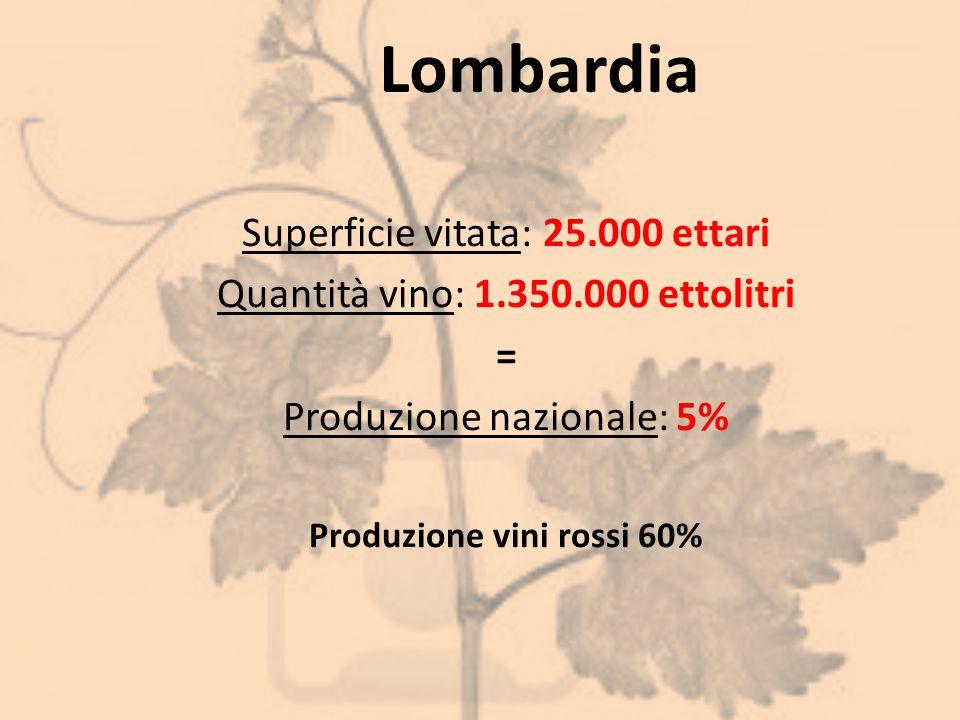Lombardia Superficie vitata: 25.000 ettari Quantità vino: 1.350.000 ettolitri = Produzione nazionale: 5% Produzione vini rossi 60%