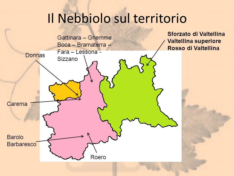 Il Nebbiolo sul territorio Donnas Barolo Barbaresco Roero Carema Gattinara – Ghemme Boca – Bramaterra – Fara – Lessona - Sizzano Sforzato di Valtellin