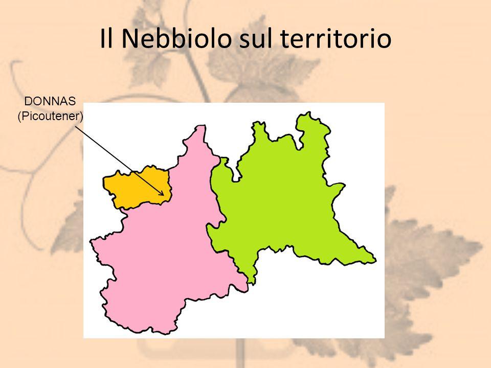 Il Nebbiolo sul territorio DONNAS (Picoutener)
