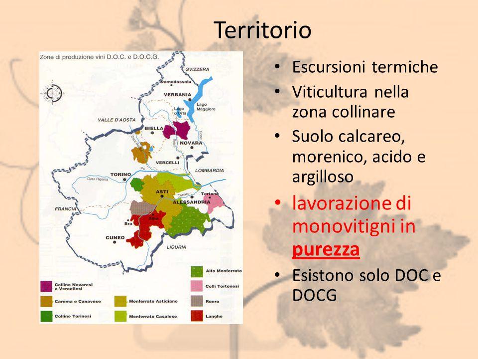 Territorio Escursioni termiche Viticultura nella zona collinare Suolo calcareo, morenico, acido e argilloso lavorazione di monovitigni in purezza Esis