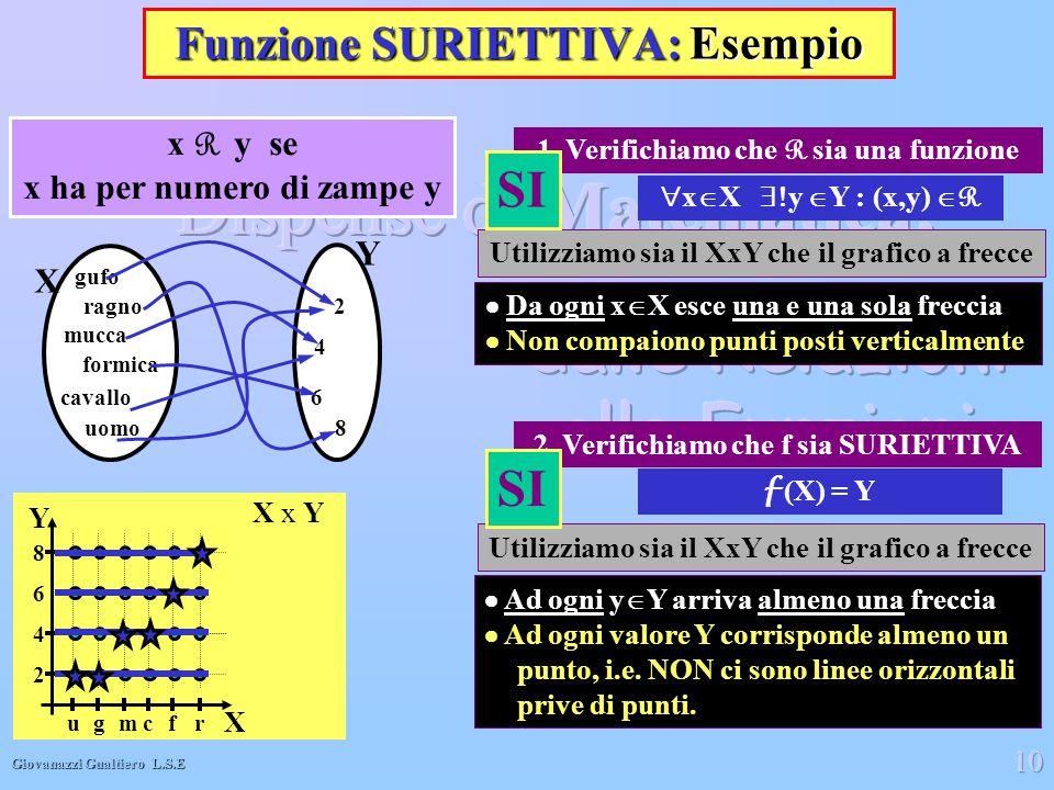 Giovanazzi Gualtiero L.S.E 10 Funzione SURIETTIVA: Esempio  x  X  y  Y : (x,y)  R X gufo ragno formica mucca cavallo uomo Y 2 4 6 8 x R y se x h