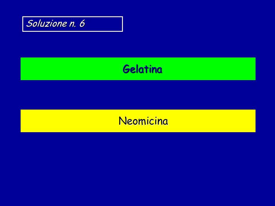 Neomicina Gelatina Soluzione n. 6