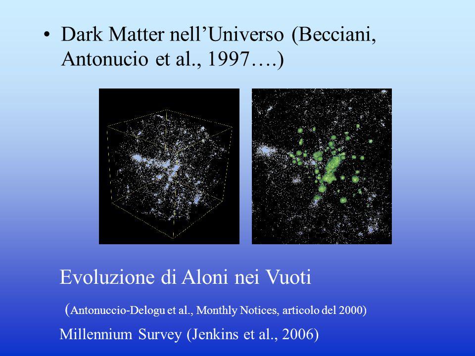 Dark Matter nell'Universo (Becciani, Antonucio et al., 1997….) Evoluzione di Aloni nei Vuoti ( Antonuccio-Delogu et al., Monthly Notices, articolo del 2000) Millennium Survey (Jenkins et al., 2006)