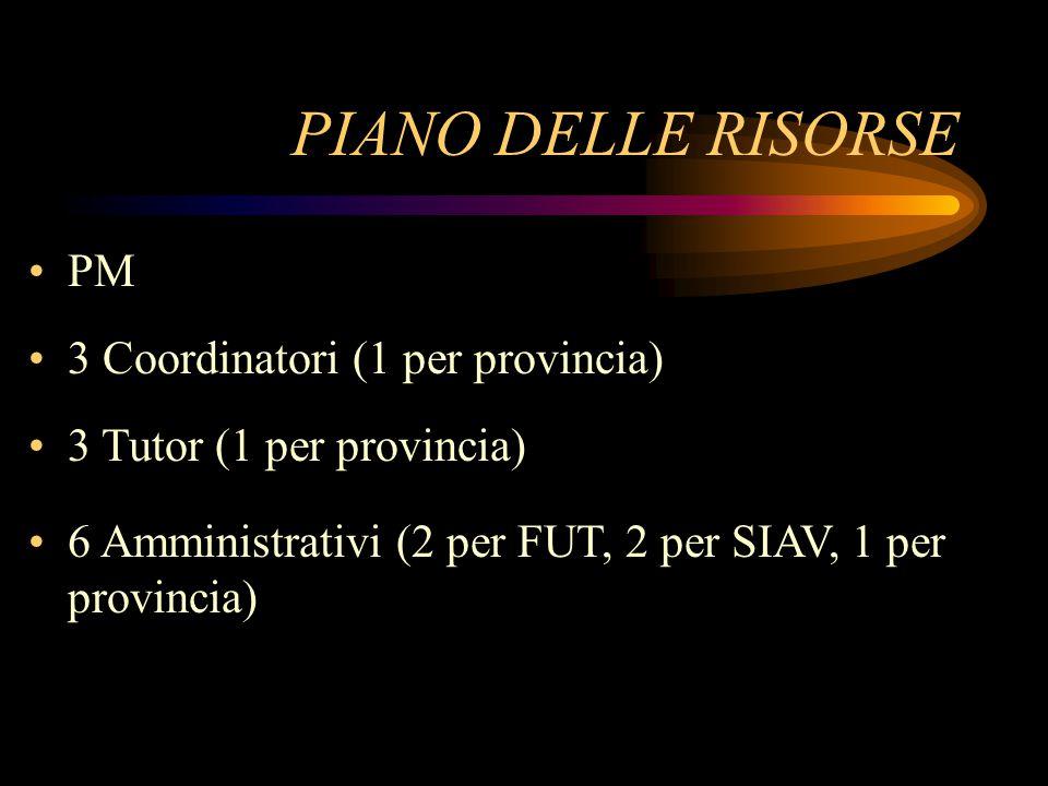 PIANO DELLE RISORSE PM 3 Coordinatori (1 per provincia) 3 Tutor (1 per provincia) 6 Amministrativi (2 per FUT, 2 per SIAV, 1 per provincia)
