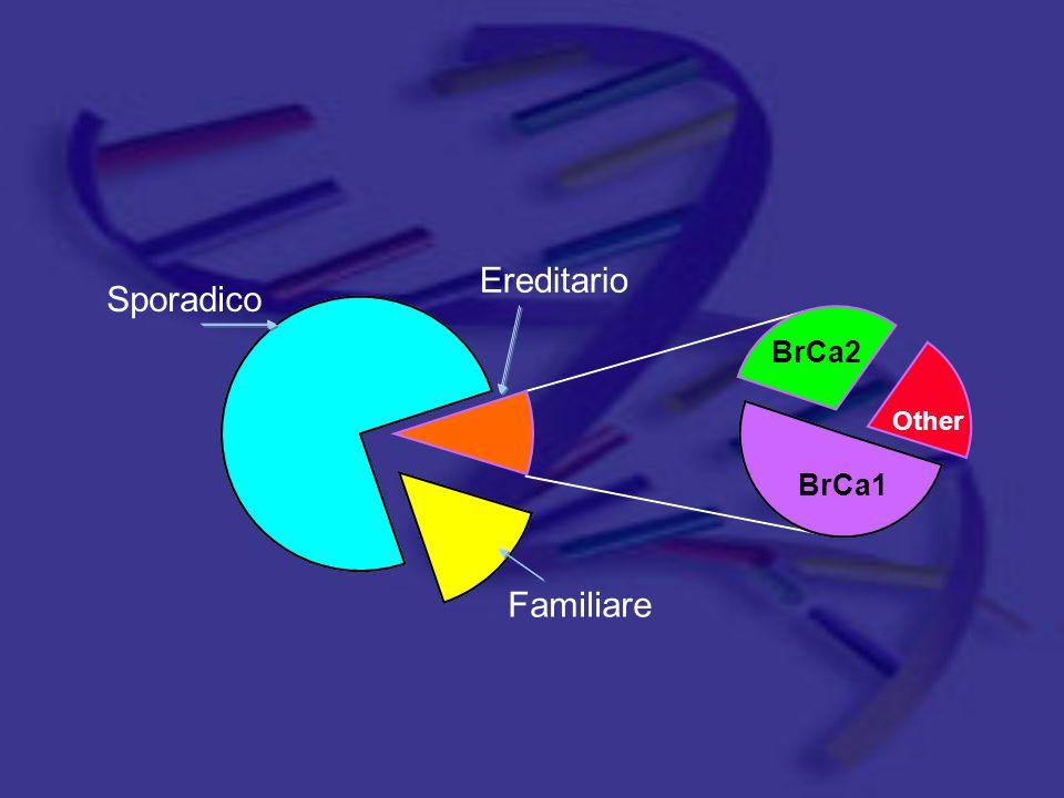 Sporadico Familiare Ereditario BrCa1 BrCa2 Other
