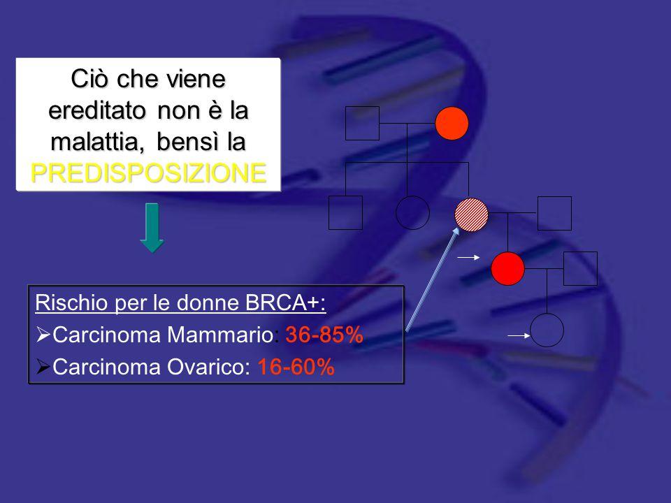 Ciò che viene ereditato non è la malattia, bensì la PREDISPOSIZIONE Rischio per le donne BRCA+:  Carcinoma Mammario: 36-85%  Carcinoma Ovarico: 16-6