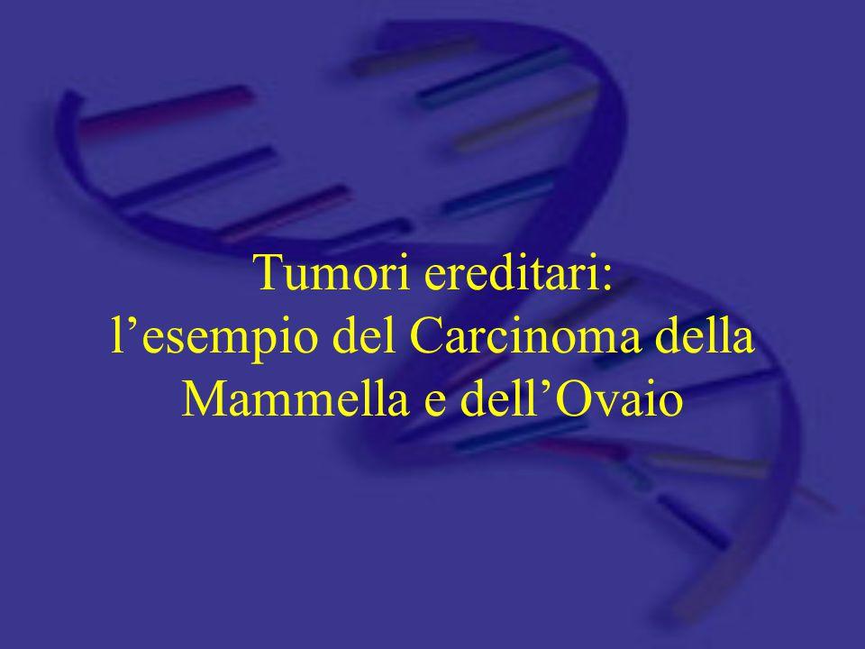 Fattori di rischio per i tumori della mammella GeografiaEtàFamiliarità Obesità Elevato consumo di grassi Nord America Nord Europa Gravidanza Menarca Menopausa Fattori riproduttivi