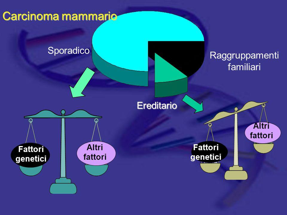 Caratteristiche del CM ereditario Casi multipli di CM/CO nella famiglia Diagnosi sia di CM che di CO  Nella stessa famiglia  Nella stessa donna Giovane età alla diagnosi di CM CM bilaterale CM maschile Maggior frequenza negli Ebrei Ashkenazi