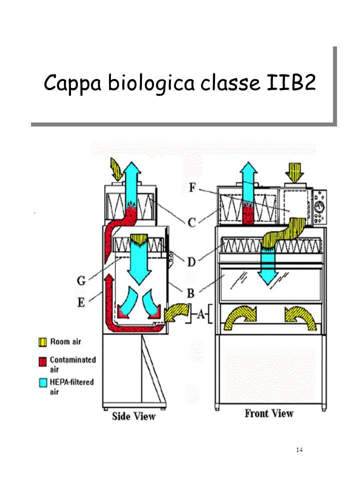 Cappa biologica classe IIB2 14