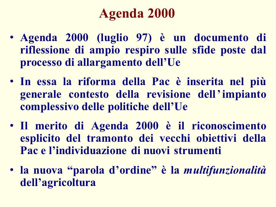 Agenda 2000 Agenda 2000 (luglio 97) è un documento di riflessione di ampio respiro sulle sfide poste dal processo di allargamento dell'Ue In essa la r