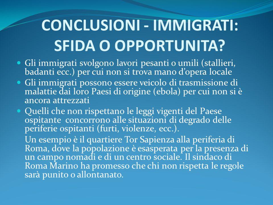 CONCLUSIONI - IMMIGRATI: SFIDA O OPPORTUNITA? Gli immigrati svolgono lavori pesanti o umili (stallieri, badanti ecc.) per cui non si trova mano d'oper