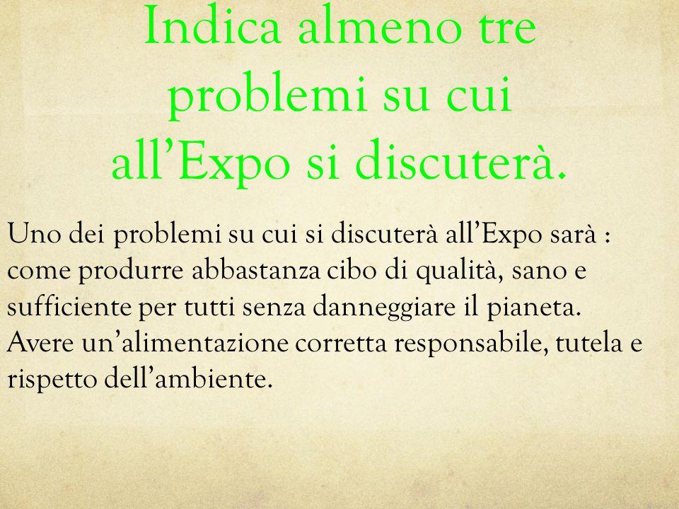 Indica almeno tre problemi su cui all'Expo si discuterà. Uno dei problemi su cui si discuterà all'Expo sarà : come produrre abbastanza cibo di qualità
