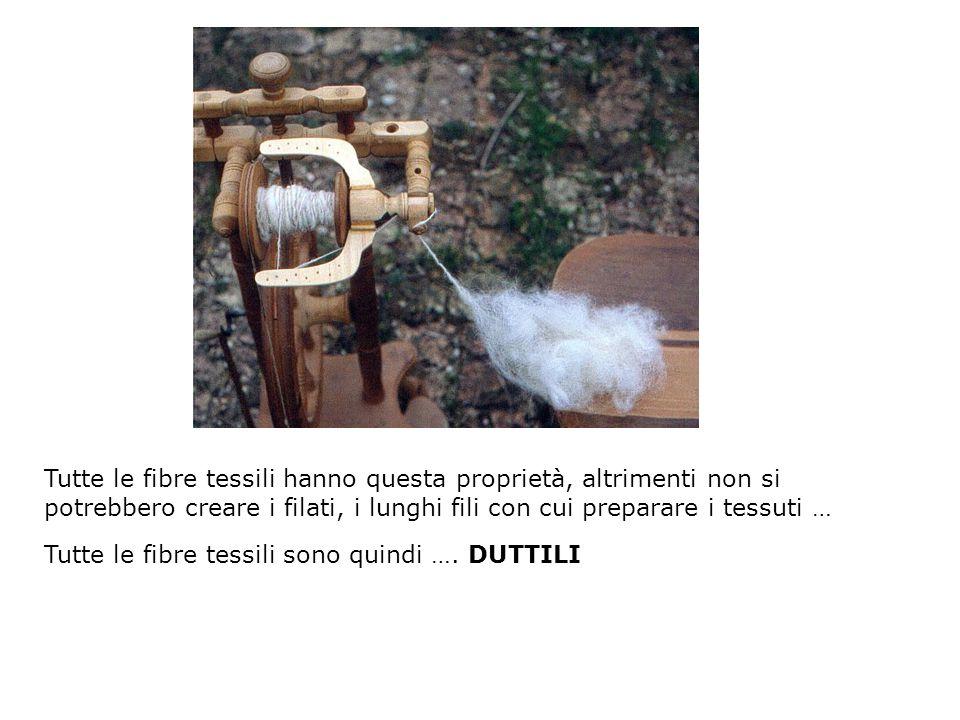 Tutte le fibre tessili hanno questa proprietà, altrimenti non si potrebbero creare i filati, i lunghi fili con cui preparare i tessuti … Tutte le fibr