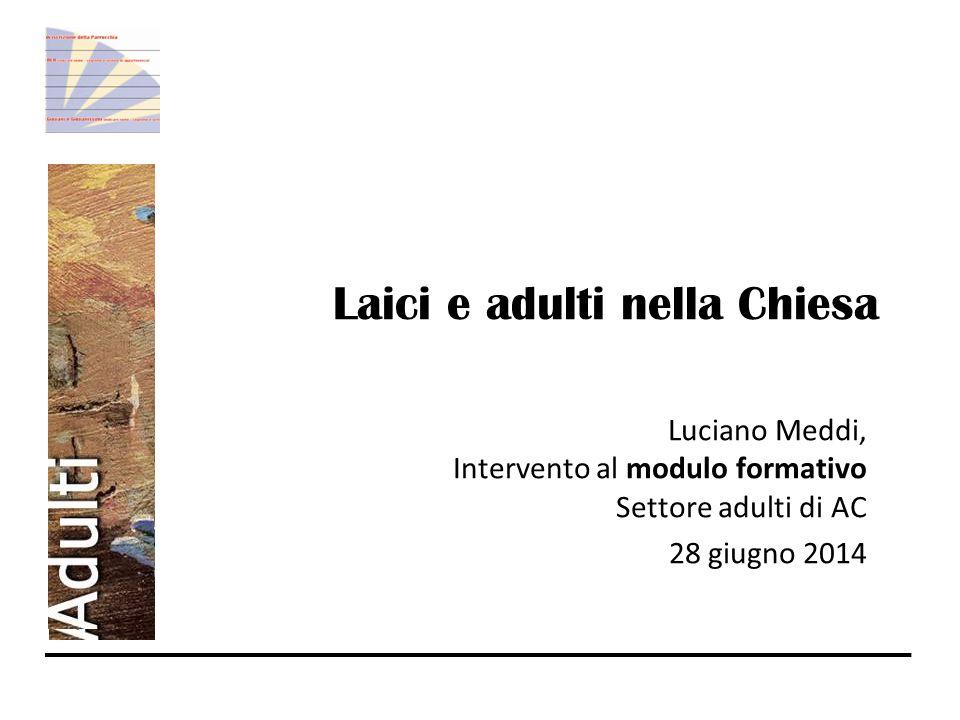 Laici e adulti nella Chiesa Luciano Meddi, Intervento al modulo formativo Settore adulti di AC 28 giugno 2014