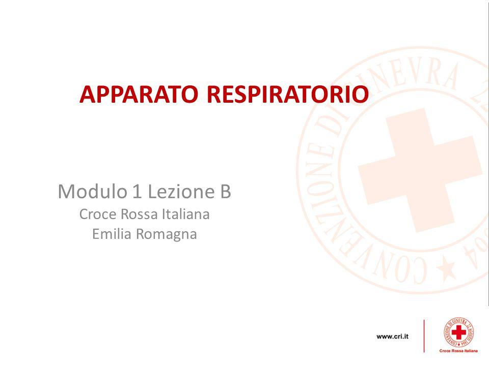 Modulo 1 Lezione B Croce Rossa Italiana Emilia Romagna APPARATO RESPIRATORIO