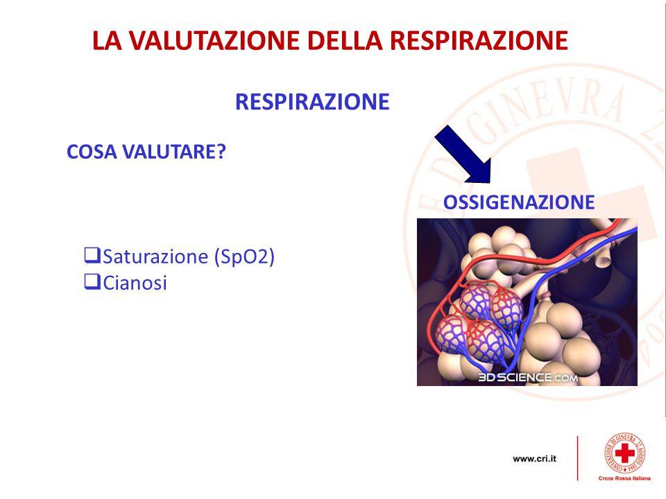RESPIRAZIONE OSSIGENAZIONE LA VALUTAZIONE DELLA RESPIRAZIONE COSA VALUTARE.