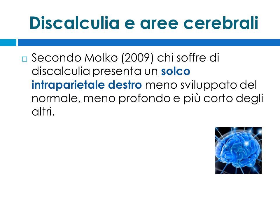 Discalculia e aree cerebrali  Secondo Molko (2009) chi soffre di discalculia presenta un solco intraparietale destro meno sviluppato del normale, meno profondo e più corto degli altri.