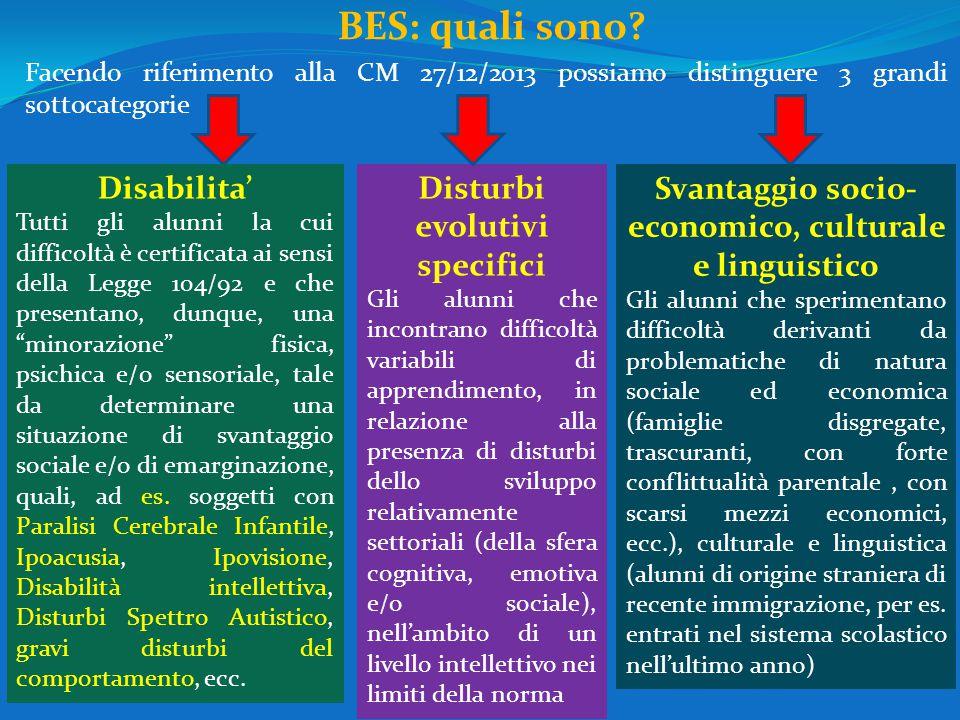 BES: quali sono? Facendo riferimento alla CM 27/12/2013 possiamo distinguere 3 grandi sottocategorie Disabilita' Tutti gli alunni la cui difficoltà è
