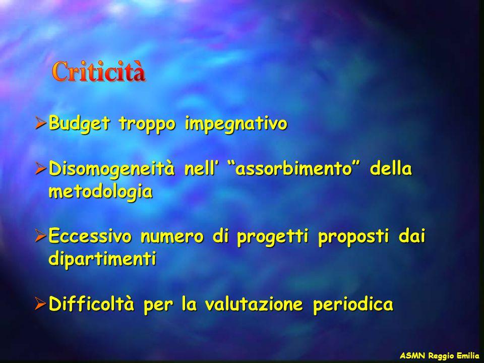 """ Budget troppo impegnativo  Disomogeneità nell' """"assorbimento"""" della metodologia  Eccessivo numero di progetti proposti dai dipartimenti  Difficol"""