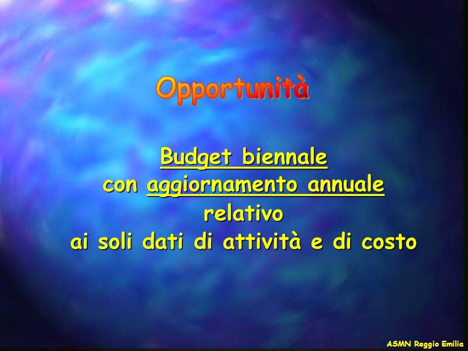 Budget biennale con aggiornamento annuale relativo ai soli dati di attività e di costo ASMN Reggio Emilia