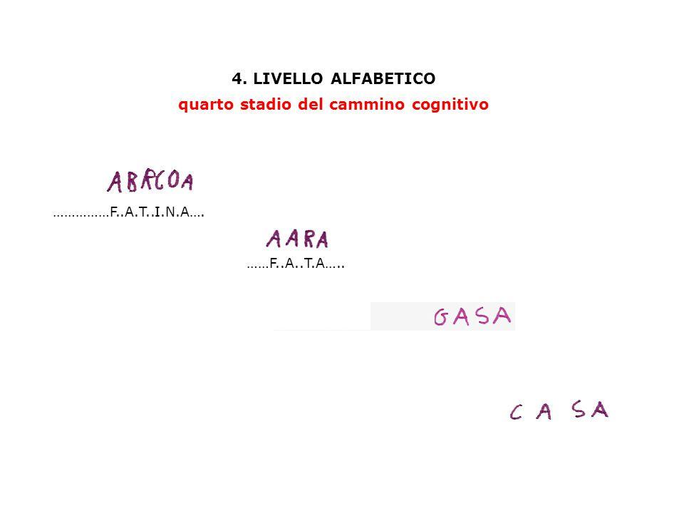 4. LIVELLO ALFABETICO quarto stadio del cammino cognitivo ……………F..A.T..I.N.A…. ……F..A..T.A…..