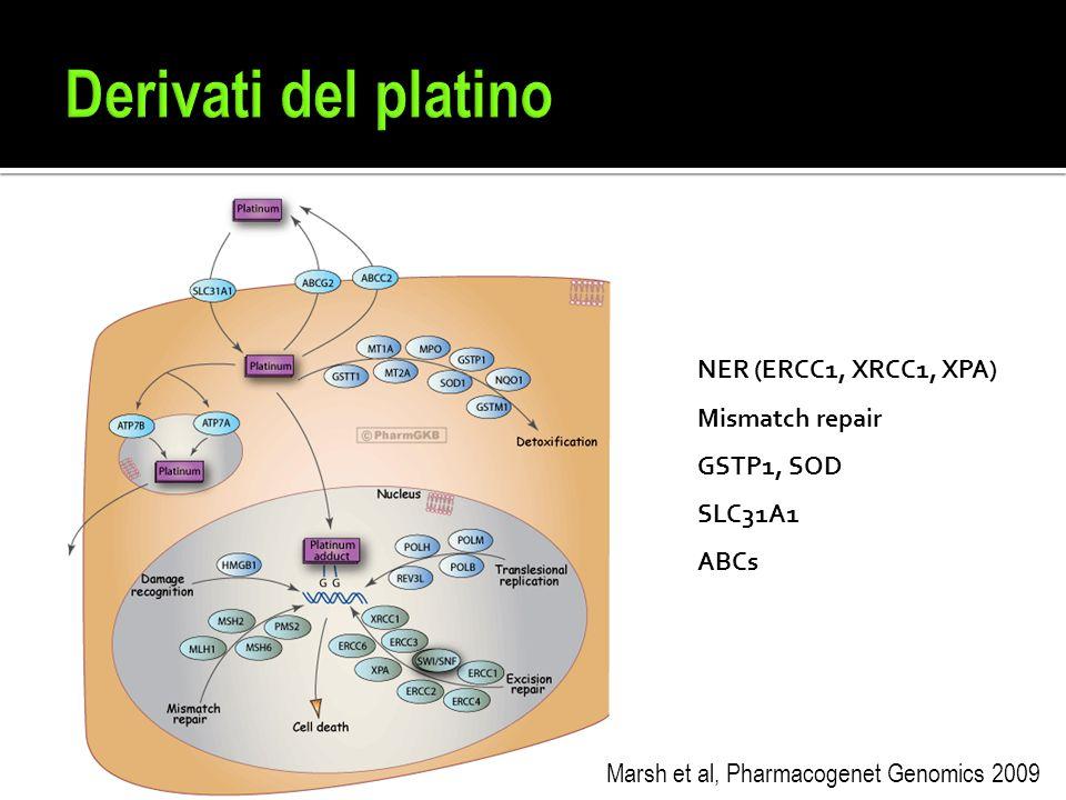 Marsh et al, Pharmacogenet Genomics 2009 NER (ERCC1, XRCC1, XPA) Mismatch repair GSTP1, SOD SLC31A1 ABCs