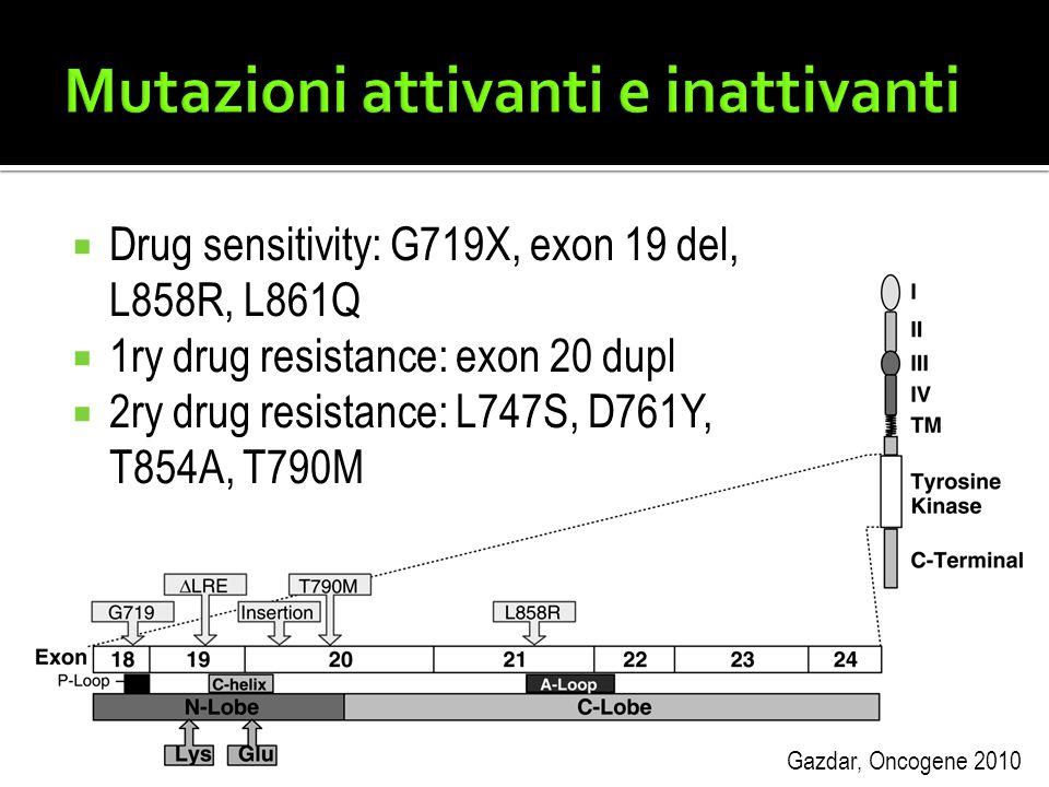  Drug sensitivity: G719X, exon 19 del, L858R, L861Q  1ry drug resistance: exon 20 dupl  2ry drug resistance: L747S, D761Y, T854A, T790M Gazdar, Onc
